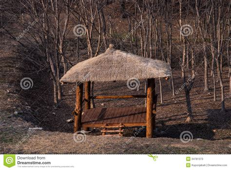 pavillon forst wood pavilion in forest stock image image of landscape