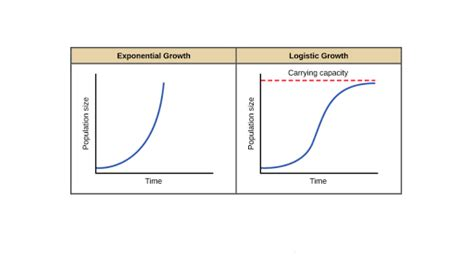 pattern variables and paradigm exponential logistic growth article khan academy
