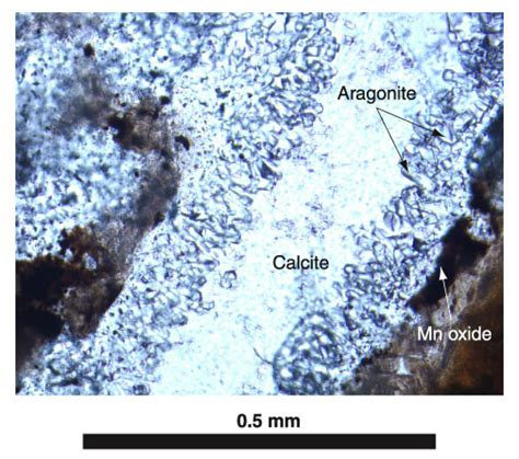 calcite thin section figure f15