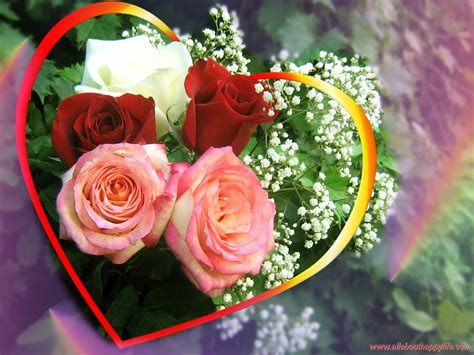 images of love roses love wallpapers