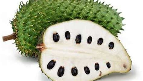 guyabano research paper soursop graviola could this superfood prevent cancer