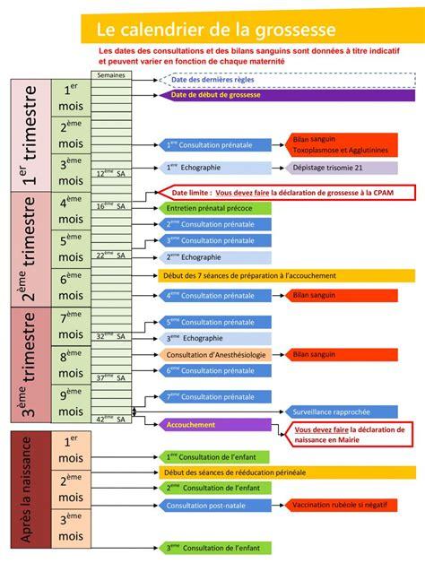 Calendrier De Semaine De Grossesse Calendrier Grossesse Prengancy Baby Infographic
