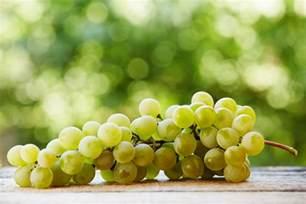 uva le uva da tavola le principali variet 224 dall italia alla