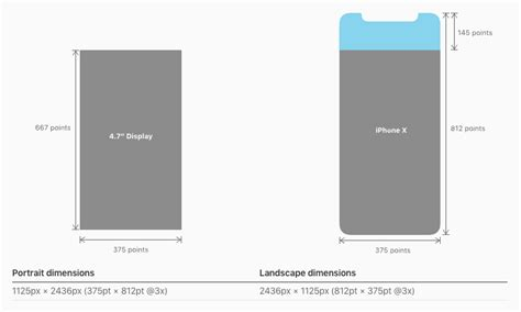 iphone layout dimensions iphone x ui guidelines screen details and layout