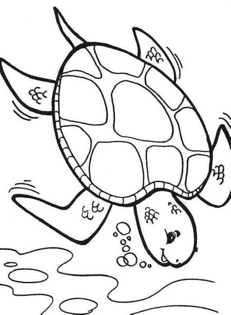 preschool coloring pages turtles coloring pages sea turtle printables az coloring pages