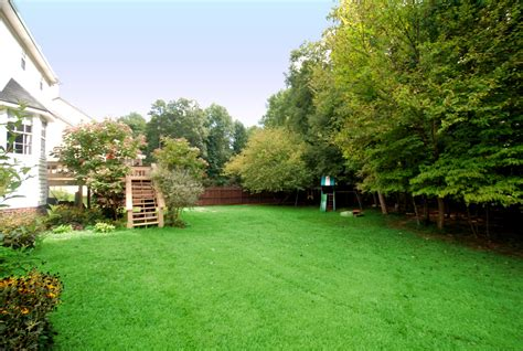 A Backyard | pest control birmingham al enjoy a pest free backyard