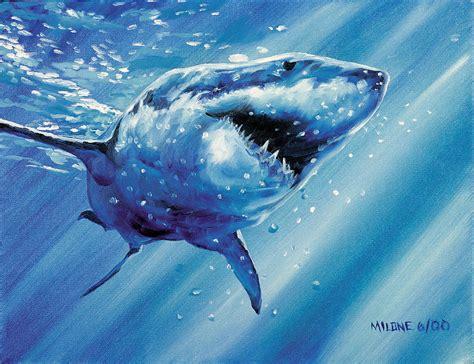 shark painting great white shark by matthew milone