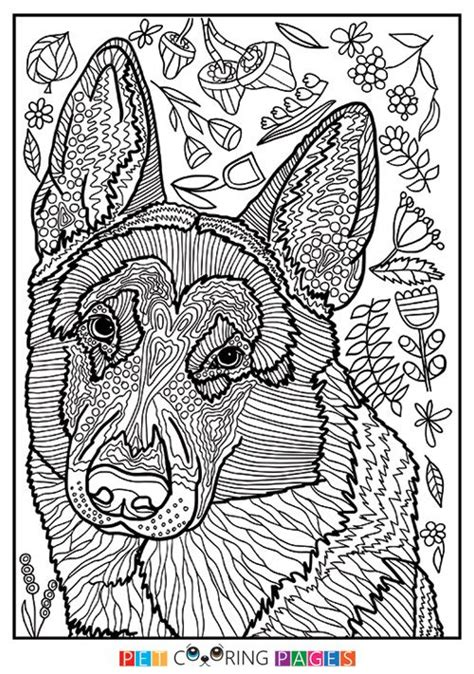 1472 best colouring images on pinterest coloring books