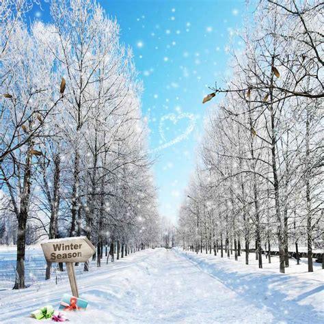 winter season 10 x10 cp backdrop computer printed scenic
