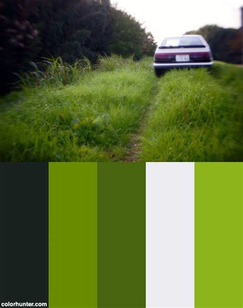 28 best images about grass color on green paint colors and olives