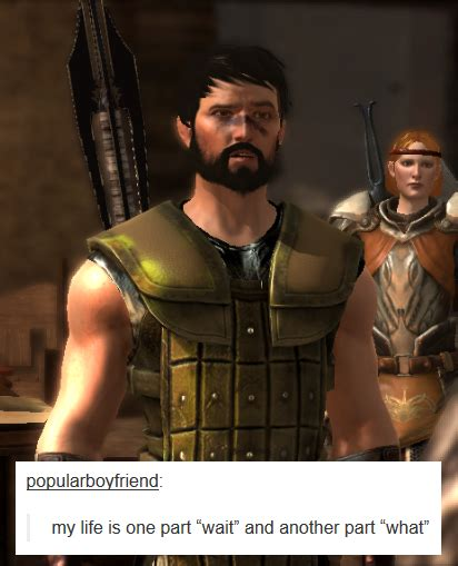 Dragon Age Memes - fenhawke danger zone bubonickitten dragon age ii text