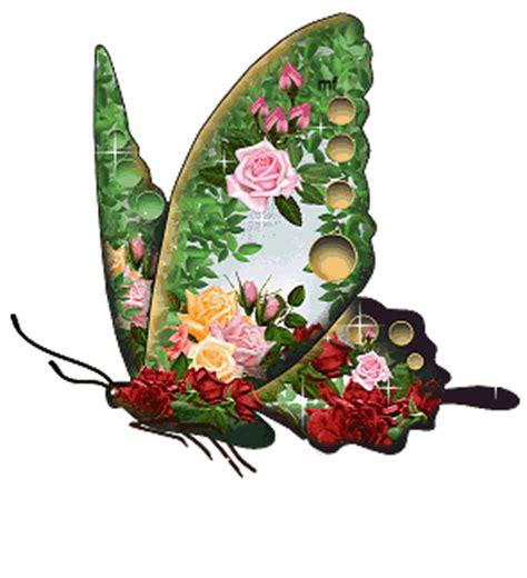 imagenes de mariposas brillantes mariposas de colores brillantes coleccion de mariposas