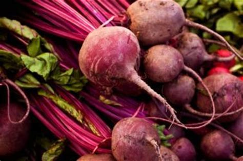 Does Beetroot Make Your Stool by Vegetable Cells In Stool Doctor Insights On Healthtap