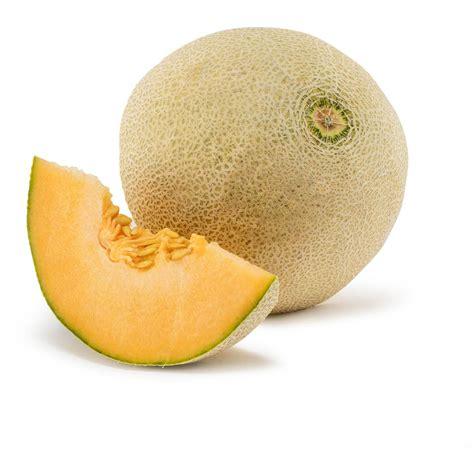 chagne rock a melon 250ml rockmelon fresh whole each woolworths