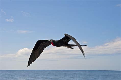 galapagos cruise day 1 cerro dragon fromalaskatobrazil