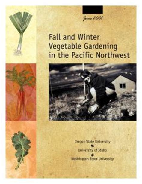 image of fall and winter vegetable gardening in the