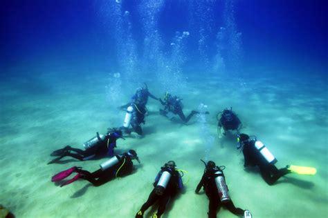 dive sea sea diving sea diving