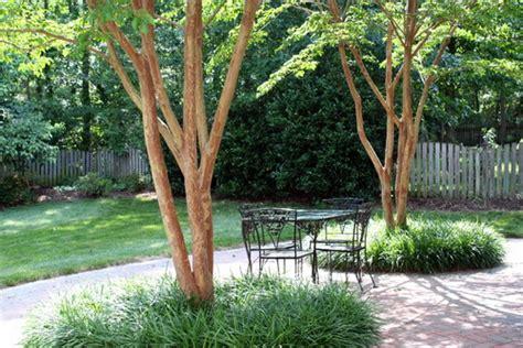 Patio Tree Ideas 5 Beautiful Patio Designs Around Trees Dot