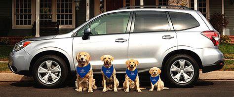 solicitud bianual 2015 2016 consejos tiles para viajar subaru te brinda consejos 218 tiles para viajar con mascotas