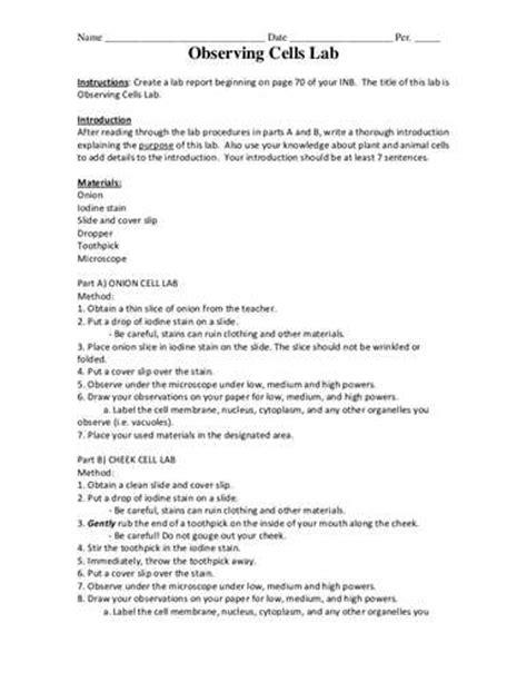 layout of a formal lab report chemistry formal lab report top quality homework and