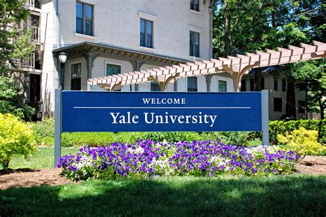 Yale Search Application Process Yale Jackson Institute For Global Affairs
