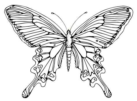 Filz Vorlagen Muster Schmetterling Basteln Schmetterlinge Aus Filz Papier Und Malvorlagen F 252 R Den