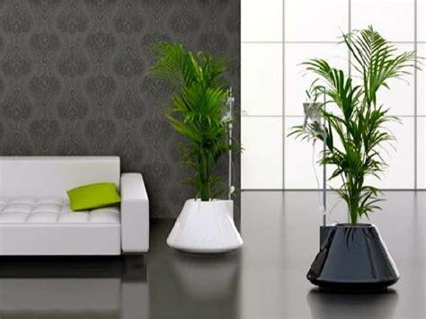 vasi e fioriere vasi e fioriere da interno foto design mag