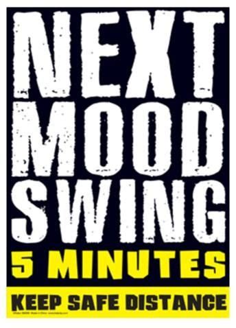 next mood swing 5 minutes 43 best novelty signs images on metal signs