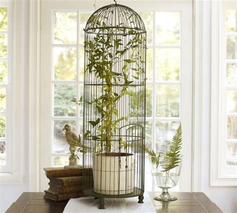 Home Interior Bird Cage by Tall Wire Bird Cage Traditional Home Decor By
