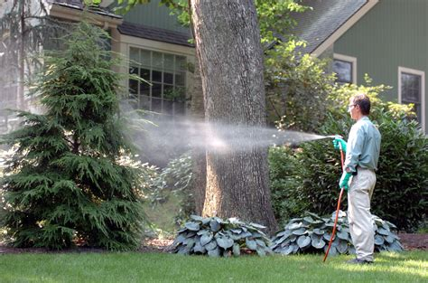 tree spray dormant and your trees shrubs tomlinson bomberger