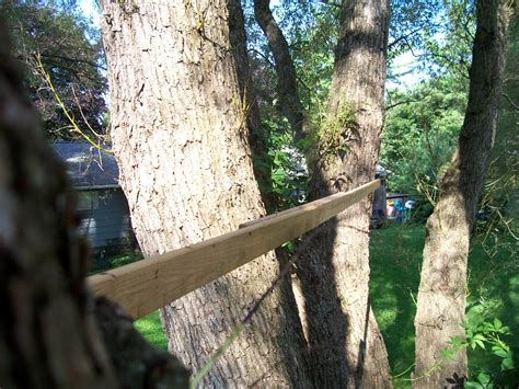 how to attach a swing to a tree branch so you want to install a garnier limb