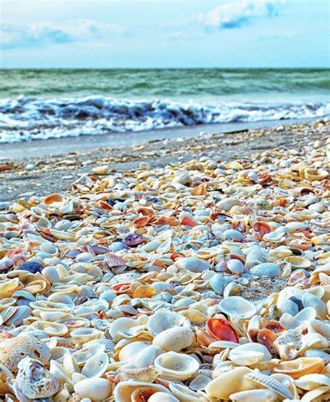 best beaches for seashells best unique beaches in the world bliss living