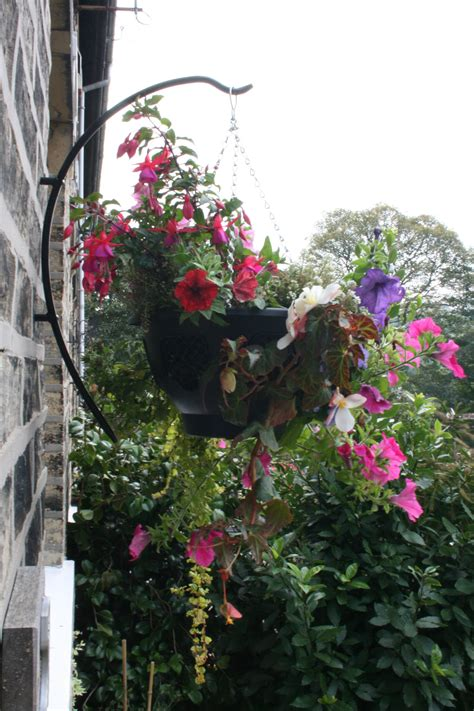 Hanging Garden Ideas How To Plant Hanging Baskets Garden Features Ideas