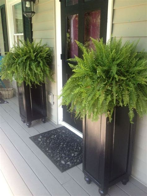 Container Plant Ideas Front Door by 25 Best Ideas About Planters On Outdoor
