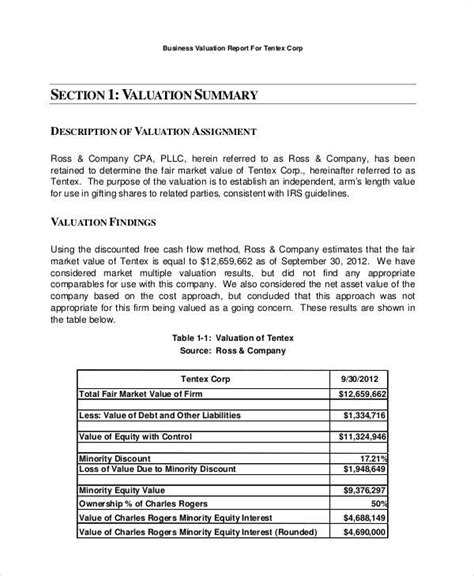 property valuation report template 5 sle business valuation reports sle templates