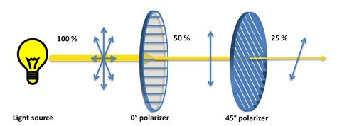 Polarization Of Light by Is It All A Coincidence An Insight Into The Quantum World