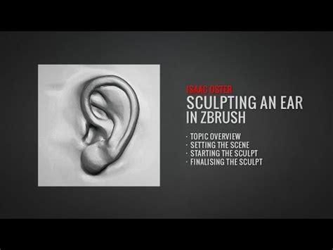 Zbrush Tutorial Ear | sculpting an ear in zbrush full tutorial at badking com