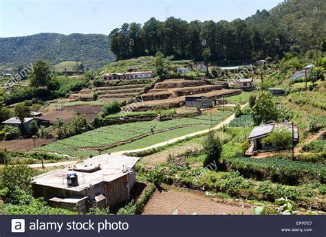 subsistence farming agriculture britannica com