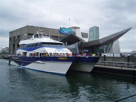 new england boat show hotels new england aquarium whale watch boston ma hours