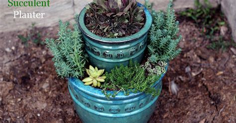 how to make a succulent planter how to make a succulent planter hometalk