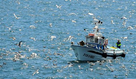imagenes de barcos en alta mar fotos gratis mar costa oceano veh 237 culo bah 237 a paseo