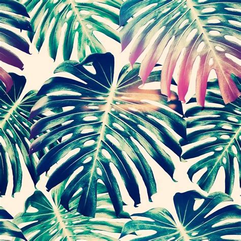 tropical pattern background free beautiful seamless floral pattern backgrounds with