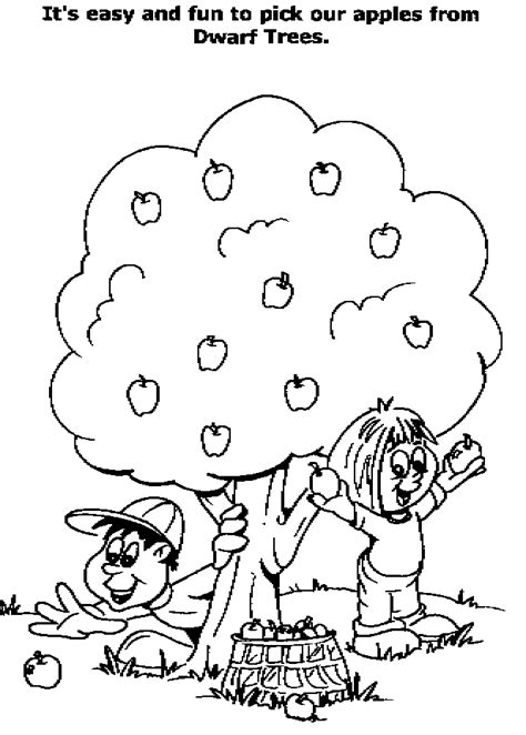 apple harvest coloring pages apple harvest clipart 35