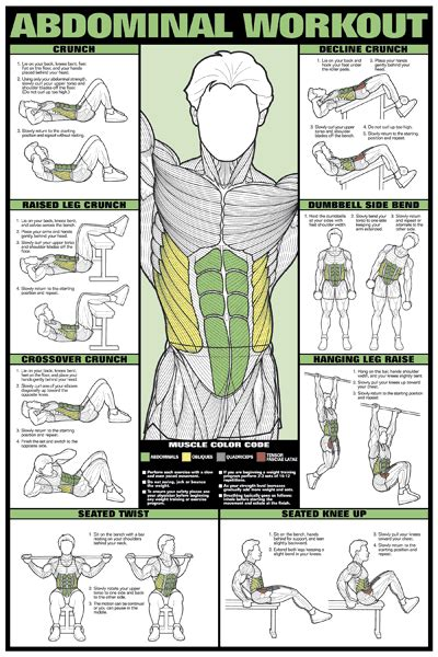 details about abdominal workout wall chart professional fitness poster exercise