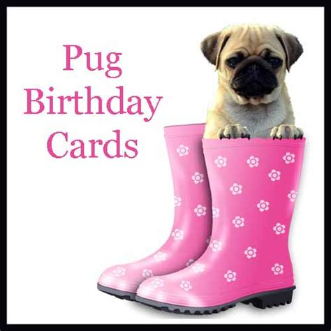 pug card celebrate the wrinkles with these pug birthday cards the cool card shop