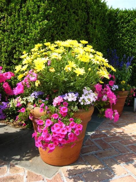 Garden In Pots Ideas 18 Best Images About Garden Container On