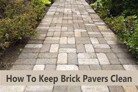 How To Clean Paver Patio How To Clean Brick Pavers