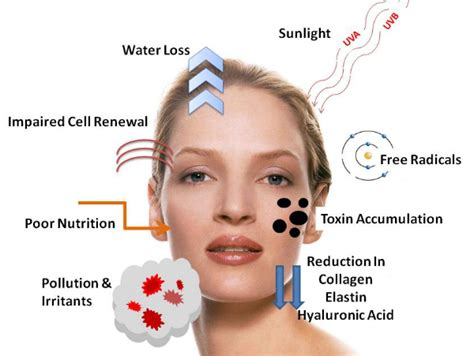 Laptops The New Cause Of Skin Aging by Skin Care Wrinkles Anti Aging Solutions Include Wrinkle