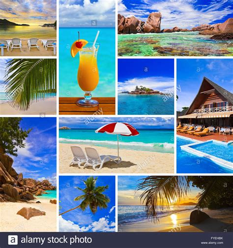 collage  summer beach images nature  travel