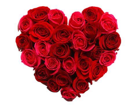 imagenes de rosas del dia del amor y la amistad san valent 237 n 14 curiosidades que no conoc 237 as de este 14